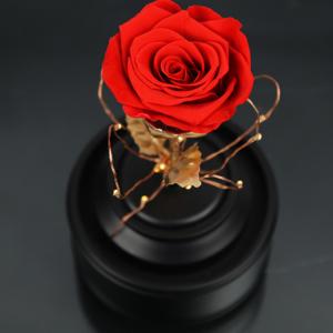 گل رز جاودان با اسپیکر بلوتوثی